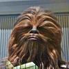 Chewbacca costume. the head.