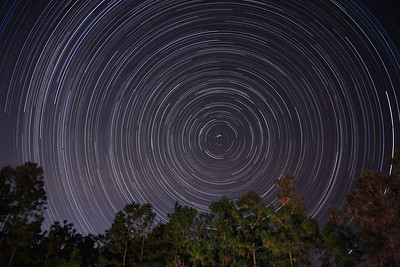 Star Trails in our backyard on 11/27/2008. This is a combination of 441 30-second exposures, from 9:59 pm until 2:03 am.  If you are interested in photographing star trails yourself, check out our article, How to Photograph Star Trails!