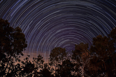 More Backyard Star Trails on 01/08/2010. This is a combination of 281 30-second exposures, from 9:48 pm until 12:23 am.  If you are interested in photographing star trails yourself, check out our article, How to Photograph Star Trails!