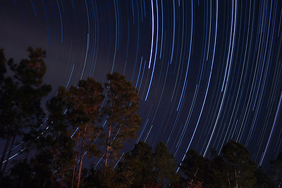 Star Trails in our backyard on 11/23/2008.  This is a combination of 428 30-second exposures, from 8:51 pm until 12:46 am.  If you are interested in photographing star trails yourself, check out our article, How to Photograph Star Trails!