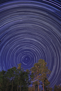 Star Trails in our backyard on 12/02/2008. This is a combination of 471 30-second exposures, from 9:05 pm until 2:25 am.  If you are interested in photographing star trails yourself, check out our article, How to Photograph Star Trails!