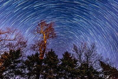 Star Trails 3/29/17