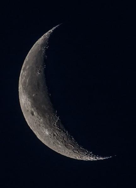 Waning Crescent Moon 4/3/16