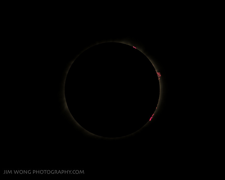 Total solar eclipse (prominences) (8/21/2017)