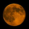 A Plane Crossing in Front of Rising Super Moon