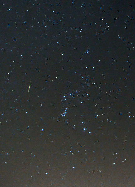 An Orionid Meteor Streaking Next to Constellation Orion