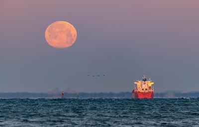 "The Super ""Snow"" Full Moon Setting Over Sandy Hook Bay 2/19/19"