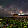 The Milky Way Rising Over The Montauk Lighthouse and Algae-Covered Rocky Beach in Montauk, NY 5/20/20