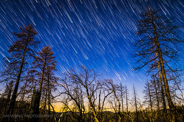 Star Trails, Groveland, California (2/26/16)