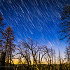 Star Trails, Groveland, California (2/26/16)