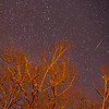 A Meteor Streaking Across the Sky, Farmingdale, NJ