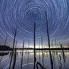 Star Trails Over The Dead Trees In The Manasquan Reservoir 10/1/21