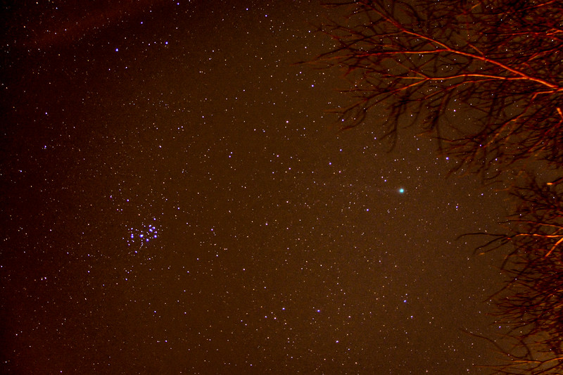 Pleiades and Comet Lovejoy