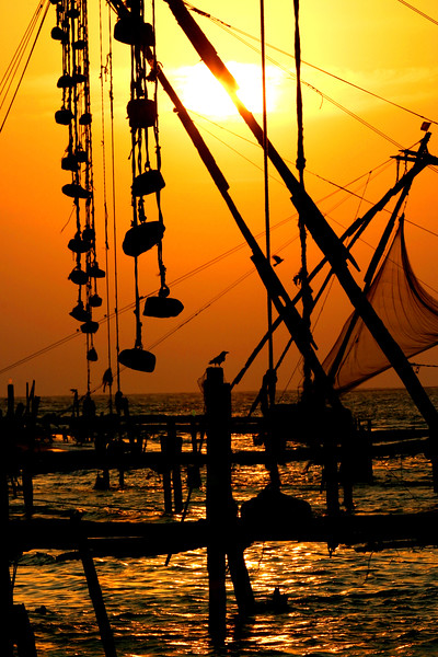 A crow watches the sun set behind the famous Chinese fishing nets in<br /> Cochin, India.