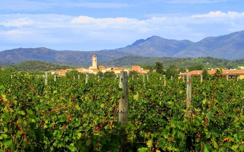 Views of the town from La Vinyeta's vineyard.