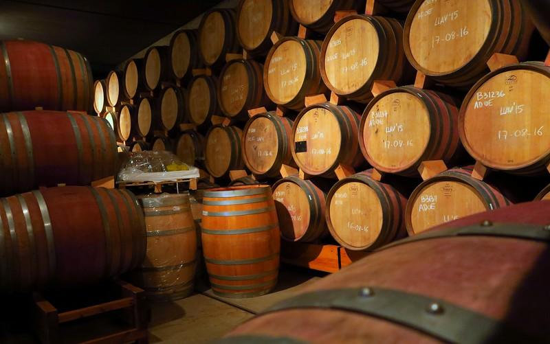 Barrels of wine at La Vinyeta.