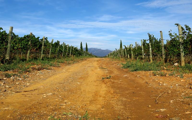 La Vinyeta's beautiful setting.