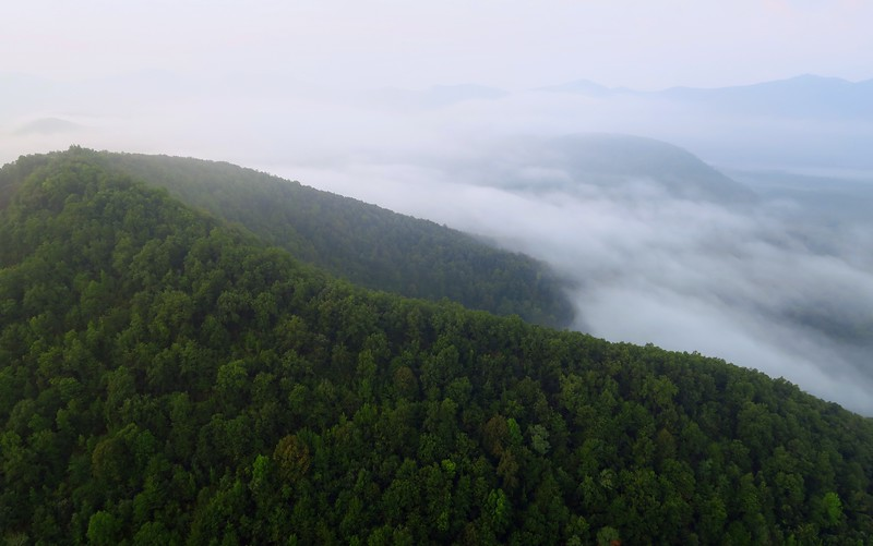 Passing over trees and clouds during our hot air balloon ride.