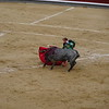 The fights can seem almost scripted.  But we saw a bull knock one of the matadors  to the ground and try to gore him. The guy was quite shaken up.  The danger to the matador is very real.