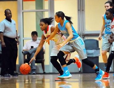 SP v Hoover Girls Basketball 1-29-16