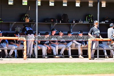 SP v Hoover Baseball 4-1-17
