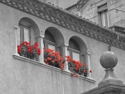 Red flowers in Girona