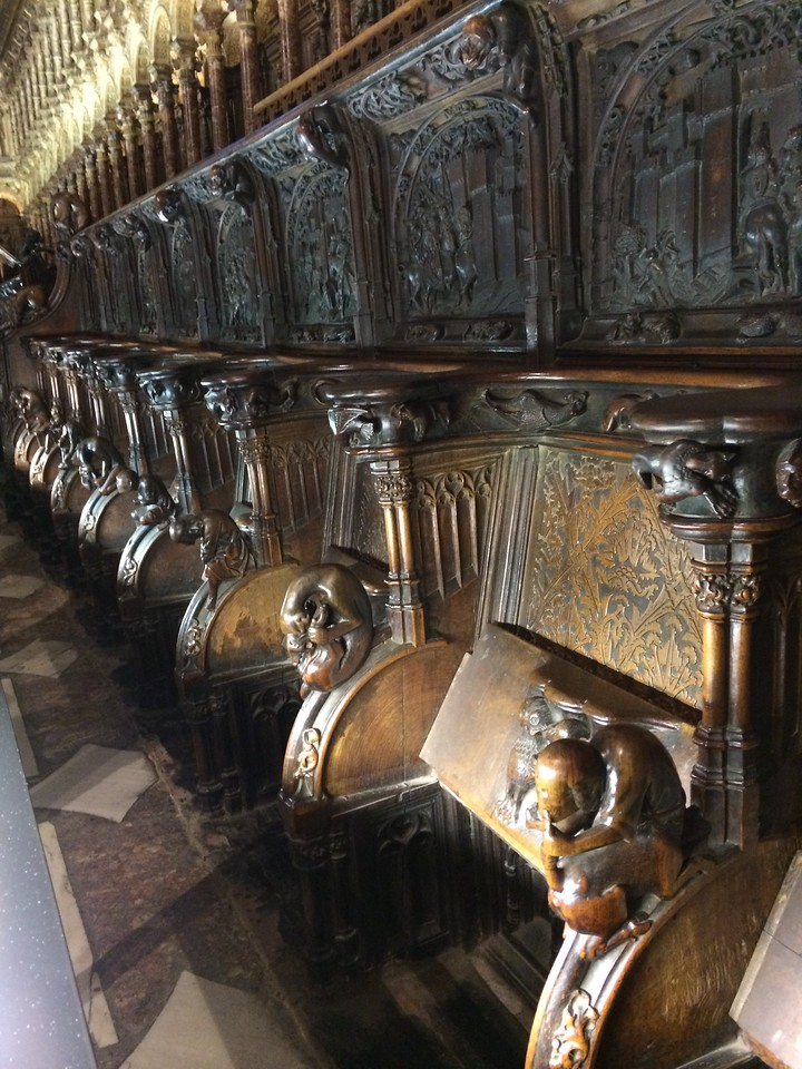 The choir stalls were pretty interesting with carvings of animals to symbolize the different viirtues. Ex. Dog for loyalty, lion for strength etc.