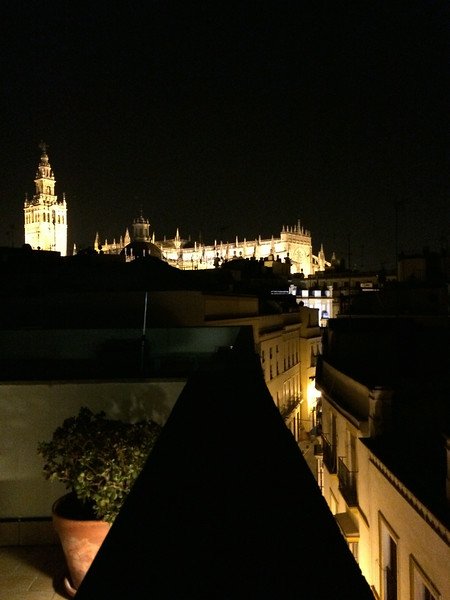 Wow! Rooftop view of the lit up Cathedral of Seville from our hotel.