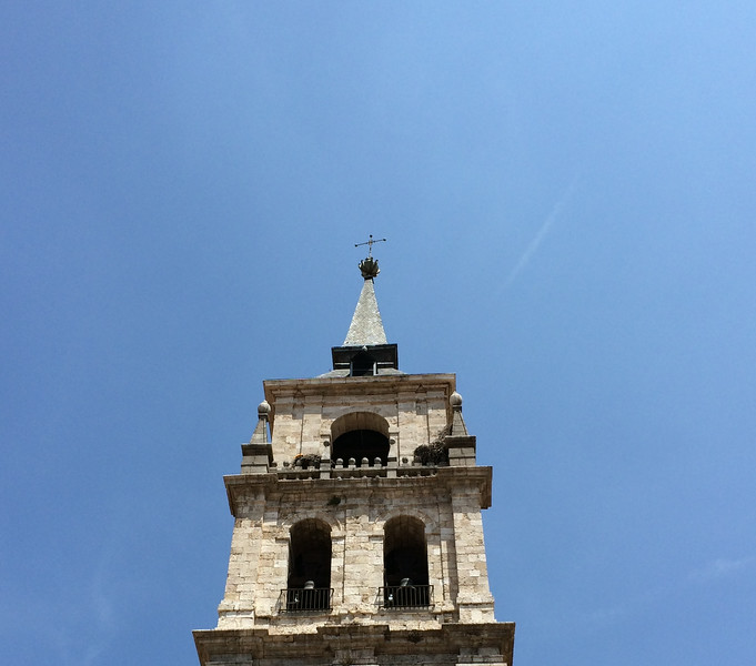 Stork nests above the belfry of this church tower