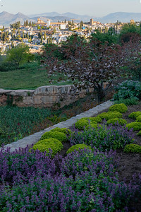 The Alhambra of Grenada is famous for its buildings and its gardens