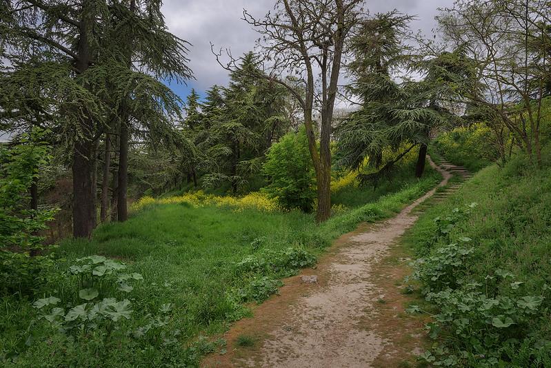 Park Near Castle