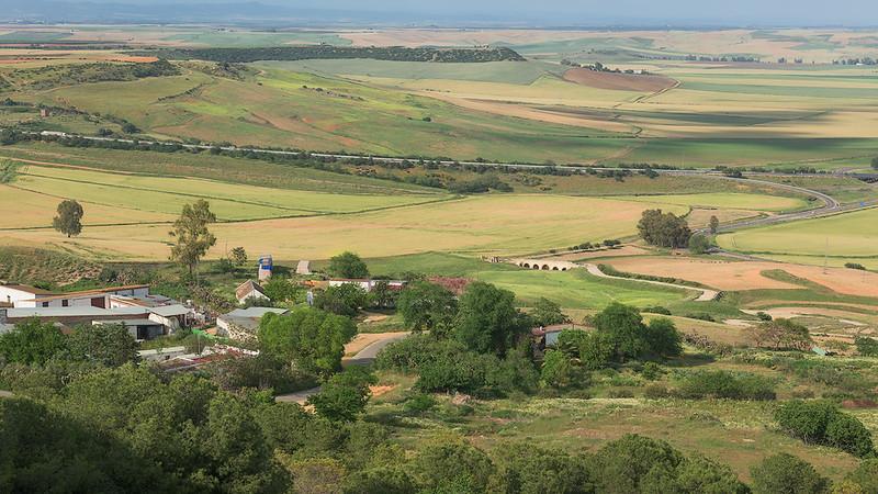 Fields near Carmona