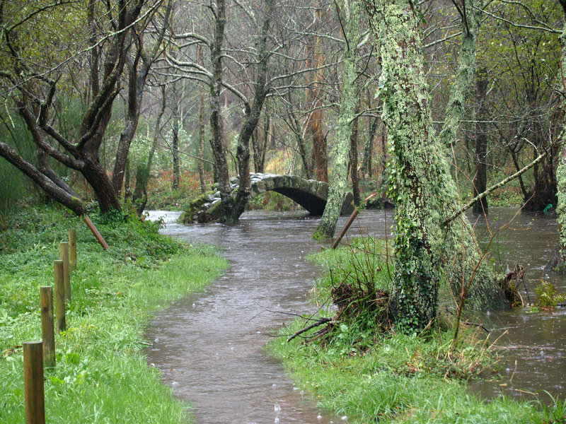 Medieval bridge, river overflowing with flash flooding from rain storm, south of Noia, Galicia, Spain. (The flooding was so quick that I couldn't get back up the path dry-footed!)