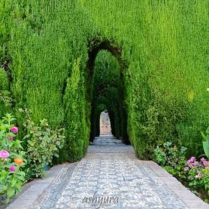 La Alhambra - El Jardin