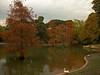 Retiro - Crystal Palace Lake 03 CP5k-DSCN2089 (2005-11-03)