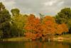 Retiro - Crystal Palace Lake 01 CP5k-DSCN2083 (2005-11-03)