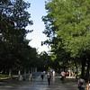 07.09.2006 09-17-45_0782