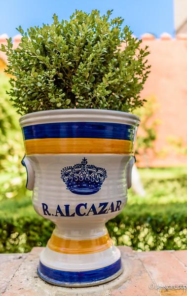 R. Alcazar