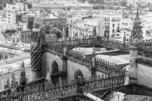 Roof detail II, Cathedral of Seville