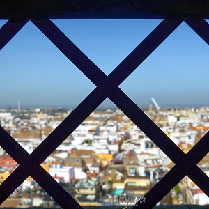 Seville - View from the Tower