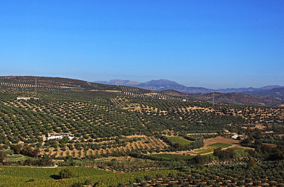 Spain: Central-Southern Countryside
