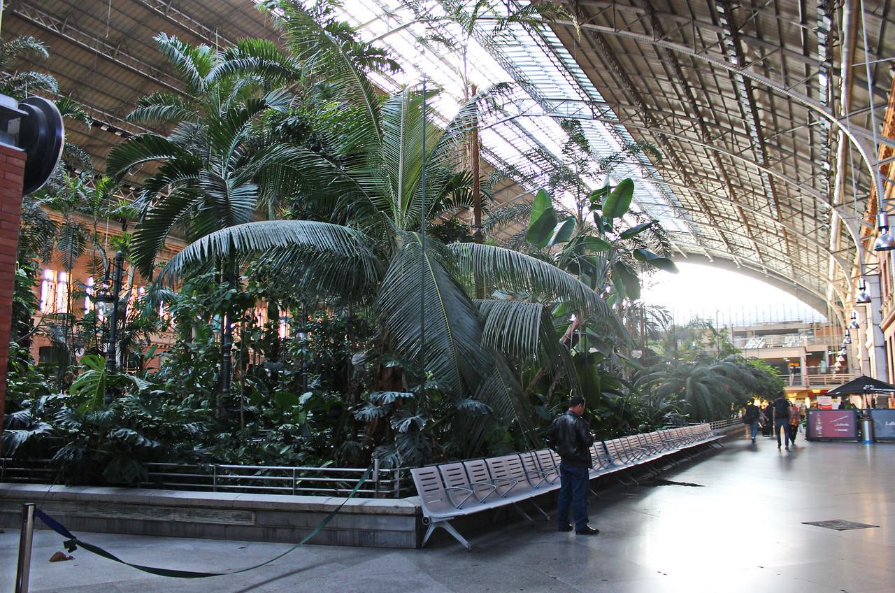 Atocha Train Station Indoor Garden