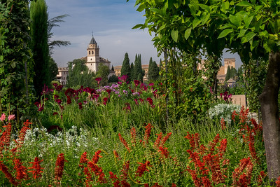 'Generalife Gardens' - Granada
