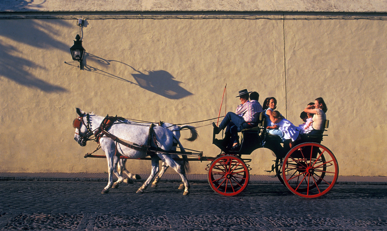 Horse-driven Cart, Cordoba