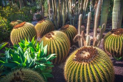 Huerto del Cura Garden