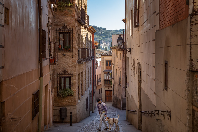 A Boy and His Dog - Toledo