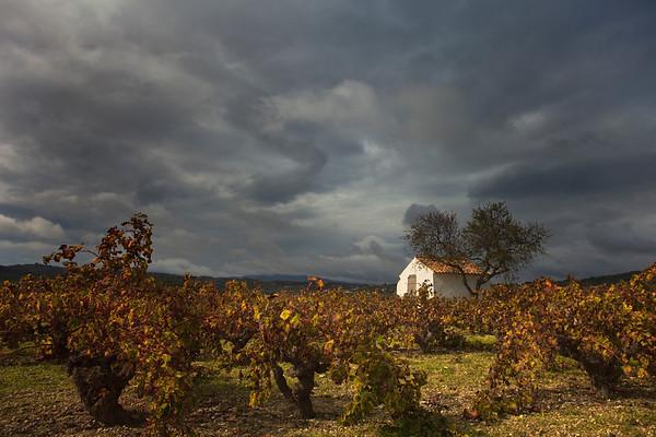 Autumn in Spain - Photo PB0093