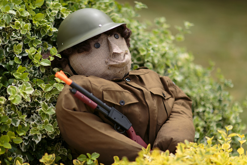 Soldier in the hedge (19 Littlecotes Close)