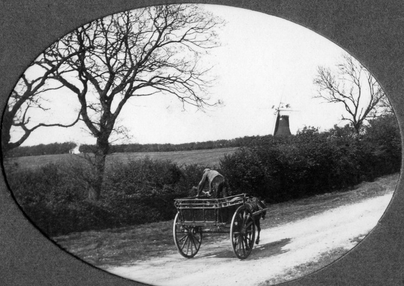 View of the windmill (Rev Holland). Provided by Elizabeth Smith