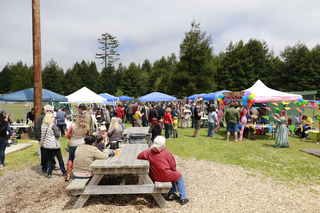. Benches allowed a place for attendees to eat various Spam-centric cuisine options at Redwood Fields. (Hunter Cresswell - The Times-Standard)